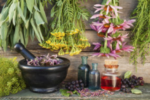 bunches of healing herbs on wooden wall, mortar, bottles and ber
